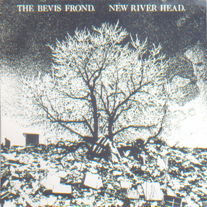 New River Head The Bevis Frond