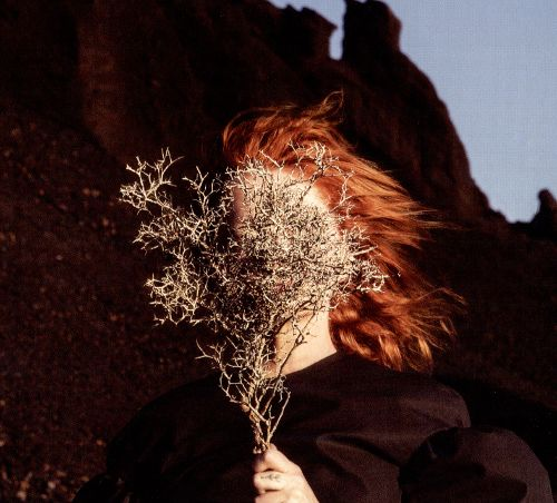 Goldfrapp Silver Eye