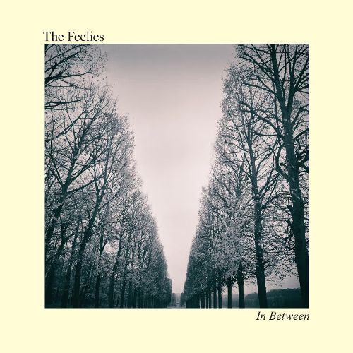 The Feelies In Between