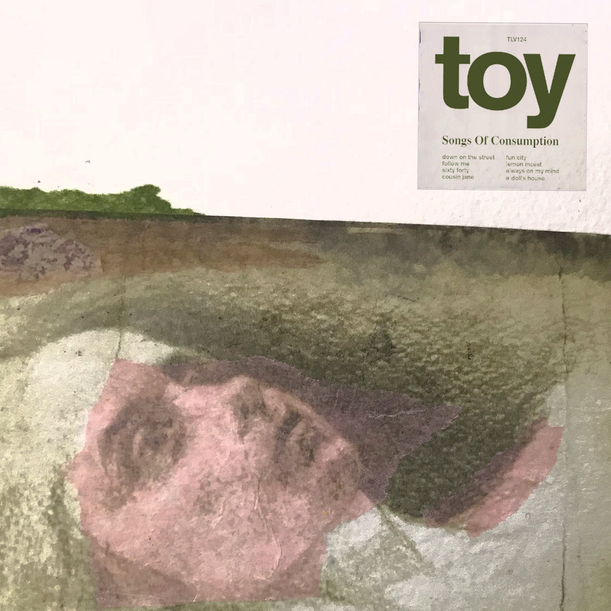 TOY Songs of Consumption